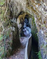 Levada do Furado (574) (Prefektionist) Tags: 50mmf14d bewässerung bewässerungskanal d700 irrigation levada levadadofurado madeira nikon portugal tunnel