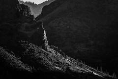 Some light (Aaron_Smith_Wolfe_Photography) Tags: mountains markleeville sierra nevada nikon d850 ebbetts pass
