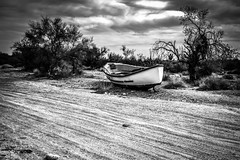 Bradshaw Trail, Palo Verde, California (paccode) Tags: solemn d850 sand landscape desert bushes brush blackwhite quiet sonoran clouds california abandoned wreck tree dirtroad ship scary serious sky creepy forgotten monochrome boat field blythe unitedstates us
