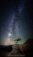 Little Tree and the Galaxy - I loved the composition of this lonely little tree in Rocky Mountain National Park under the Milky Way. (JusDaFax) Tags: lone little tree park national rockymountain rmnp davesoldanoimages shootersinthenight nightscaper milkyway