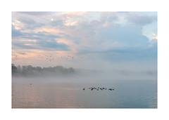Entre l'aube et le jour (Marie-Andrée Côté) Tags: lac mist aube morning