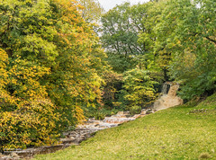 Cliff Beck waterfall in spate, Scar House, Thwaite Swaledale Oct 2018 (Richard Laidler) Tags: autumn autumncolour autumncolours autumntints beck bright cascade cascades cloudy color colors colour colours fall gill landscape northyorkshire stream swaledale thwaite uk waterfall ydnp yorkshire yorkshiredales yorkshiredalesnationalpark