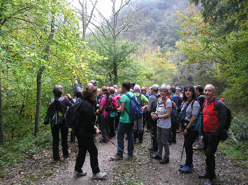 Marcha de Senderismo Bosque del Roñas Logroño Fotografia Javi Cille (7)
