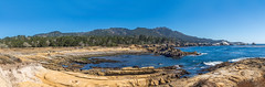 Panoramic: Point Lobos Natural Reserve (mon_ster67) Tags: pointlobos ocean seascape water coast cacoast wave mon canon sigma lowtide pointlobosnaturalreserve pointlobosstatereserve ca californiacoast pacificocean ©mon ptlobos sandstone tidepool panoramic panorama oceanview coastal