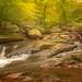 Hacklebarney State Park.jpg