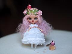 Aine Custom Petite Blythe Doll (.♥.sarsarblanki.♥.) Tags: sarsarblanki petiteblythe petite blythe customblythe customdoll custom doll dolls dollydress dolldress dress sewing sew handmade embroidery etsy miniature tiny pink sweet