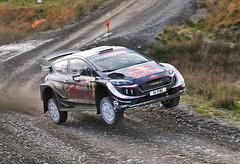 FLYING WELSHMAN (Dafydd RJ Phillips) Tags: elfyn evans wrc msport wales rally gb ford motorsport sweet lamb r5 dayinsure
