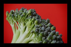 Macro Mondays - B-Food (frankvanroon) Tags: macromondays bfood broccoli macro hmm mm
