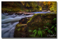 Watersmeet (jeremy willcocks) Tags: watersmeet devon ukjeremywillcocksc2018fujixt3xf1024mm nationaltrust colour river water woods autumn rocks ferns light landscape wwwsouthwestscenesmeuk jeremywillcocks