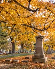 Evergreen Cemetery (David DeCamp) Tags: autumn cemetery graveyard headstone tree