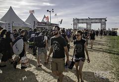 befor the festival