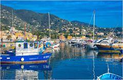 Rapallo in blue ... the harbor  ... (miriam ulivi) Tags: miriamulivi nikond7200italia liguriarapallo ilporto harbor boats barche mare sea riflessi reflecions collina hill case houses verde green cielo sky baia bay coth coth5