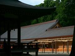 Contrast (Eshke04) Tags: shrine shintoist hikawa religious sacred architecture old traditional contrast light shadow lines curves reflection saitama japan