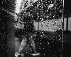 wet glas (berberbeard) Tags: hannover fotografie photography urban berberbeard berberbeardwordpresscom germany ilce7m2 itsnotatrick street primelens festbrennweite zeiss 35mm sony deutschland 35talifeproject 35mmprimelens 35x35 menschen people fixedfocallength fixedfocaljunkie