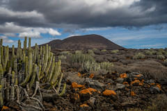 DSC_1437 (IILife) Tags: rosso tenerife palmmar sur canary ocean atlantic spain travel holiday vacation landscape nature sea lava volcano clouds panorama rocks mountain