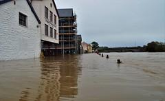 Carmarthen Storm Callum (howell.davies) Tags: flood flooding flooded water wet river towy tywi carmarthen wales uk nikon d3200 1855mm storm callum