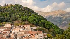 Morano Calabro Photowalk (Oash_Dany) Tags: city town calabria tree colors shadows lights
