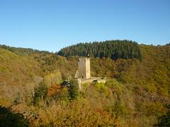 Oberburg - Manderscheider Burgen (Jörg Paul Kaspari) Tags: dieliesertaltour wanderung herbst autumn fall eifel vulkaneifel manderscheiderburgen manderscheid liesertal oberburg burgturm turm tower burg burgruine ruine ruin