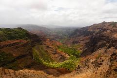Green and Rust (xythian) Tags: hi kauai