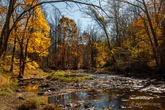 Fall Color along Little Gunpowder Falls (John H Bowman) Tags: maryland harfordcounty parks stateparks gunpowderfallsstatepark riversandstreams littlegunpowderfalls fallcolor reflections november2016 november 2016 canon16354l