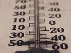 Thermometer (ildikoannable) Tags: macro closeup measurements thermometer macromonday