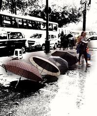 pode escolher (lucia yunes) Tags: chuva diadechuva quardachuva sombrinhas chuvaboa streetphotographie streetphoto streetshot streetvendor mobilephotographie mobilephoto rain rainday umbrela luciayunes motozplay a selectivecolor