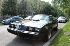 Noir (Flint Foto Factory) Tags: chicago illinois urban city autumn fall september 2018 north edgewater granville kenmore intersection sheridan 1979 1980 1981 pontiac firebird transam black gold graphics poncho generalmotors gm fbody platform pony muscle car ttops classic american sports sporty coupe