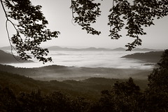 Hello goodbye (baro-nite) Tags: westernnorthcarolina blueridgeparkway fog pentax k1 smcpentax11855mm iridientdeveloper affinityphoto
