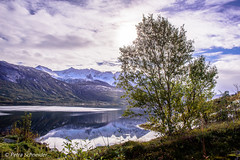 Fjord mood (Petra Schneider photography) Tags: fjord norge nordnorwegen norway northernnorway nordlandfylke clouds kjopstad nygardsjoen nordland north