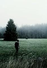 Hunting the mist (Rojs Rozentāls) Tags: vormsi läänemaakond läänemaa estonia eesti estland igaunija moody saxby travelphotography rojsrozentāls