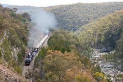 Gorge-ous (Henry's Railway Gallery) Tags: 6029 ad60class garratt steamlocomotive steamtrain heritagetrain thnsw transportheritagensw passengertrain 6s80 molonglogorge