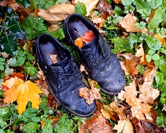 Copy-cat Crime? (violetchicken977) Tags: abandoned neglected decayed shoes autumnleaves