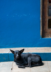 DSC08811.jpg (ChrisGoldNY) Tags: chrisgoldphoto chrisgoldny chrisgoldberg cuba cuban caribbean latinamerica licensing forsale cubano bookcover albumcover sony sonyimages sonya7rii sonyalpha viñales piñardelrio vinales pinardelrio