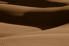 A place to get lost (Damian Gadal) Tags: oceano sand dunes california