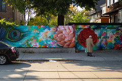 Stop and Stare (cookedphotos) Tags: 2018inpictures toronto ontario canon 5dmarkiv streetphotography 365project p3652018 roncesvalles mural man sidewalk urban art