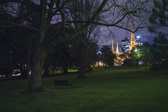 2015 (elevenmonthsinexile) Tags: fitzroygardens landscape night psc2015