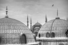 Entre cúpulas y alminares (B/N) (osolev) Tags: estambul istanbul turkiye turquia turquie turkey europe europa cupulas domes santasofia ayasofya hagiasophia sultanahmet mezquita mosque camii challengeyouwinner challenge you winner bn bw wb cy2