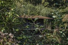 Urbex Haus am See (Fenjav) Tags: urbex abandoned decay woonboot houseboat water wood vacation vakantie urlaub hausboot