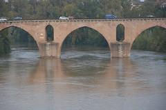 DSC_0133 (Lynn Rainard) Tags: rainard france october2018 montauban pont vieux 14th century brick bridge