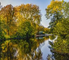 Autumn on the Dorset Stour (JackPeasePhotography) Tags: canford magna dorset autumn river reflections nikon d7200 colours october 2018 landscape