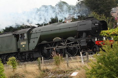 Flying Scotsman through Bagillt 1 (BigWingPhoto) Tags: flying scotsman north wales bagillt deside train steam locomotive railway track 60103 express ynys mon lner class a3 4472 pacific nigel gresley gnr flint canon 7d 70200f4l