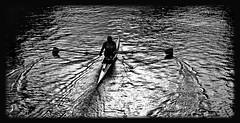 Quicksilver (Mattijsje) Tags: quicksilver vecht roeiboot skiff peddel roeispaan silhouette water rowing row reflections lights shadows