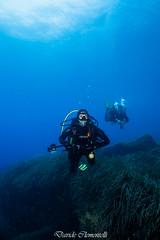IMG_1443 (davide.clementelli) Tags: diving dive dives padi immersione immersioni ampportofino portofino liguria friends amici underwater underwaterlife sottacqua