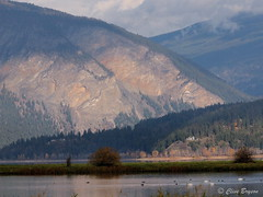A view of Bastion Mountain from the mud flats, Salmon Arm. BC (clive_bryson) Tags: bastionmountain salmonarm britishcolumbia canada fall autumn clivebryson