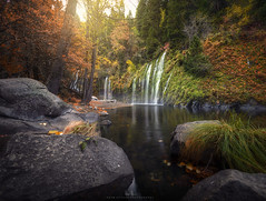 Mossbrae Falls in the Fall (wesome) Tags: adamattoun mossbraefalls dunsmuir waterfall canon1124