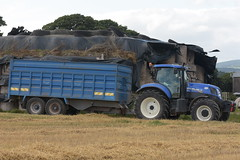 New Holland T7.200 Tractor with a DC Trailers Trailer (Shane Casey CK25) Tags: new holland t7200 tractor dc trailers trailer nh cnh blue watergrasshill traktor traktori tracteur trekker trator ciągnik newholland grain harvest grain2018 grain18 harvest2018 harvest18 corn2018 corn crop tillage crops cereal cereals golden straw dust chaff county cork ireland irish farm farmer farming agri agriculture contractor field ground soil earth work working horse power horsepower hp pull pulling cut cutting knife blade blades machine machinery collect collecting nikon d7200