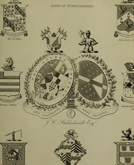 This image is taken from Encyclopaedia heraldica, or complete dictionary of heraldry, Vol. 4 (Medical Heritage Library, Inc.) Tags: genealogy heraldry emblems insignia wellcomelibrary ukmhl medicalheritagelibrary europeanlibraries date1828 idb287452430004
