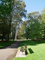 bench shadow (auroradawn61) Tags: bournemouthgardens autumncolours autumn fall october bournemouth dorset uk england 2018 lumixgx80 bench trees