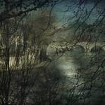 Reflet de Seine thumbnail