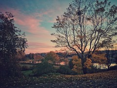 Intermission (Stefano Rugolo) Tags: stefanorugolo huaweip9lite mobilephoto snapseed landscape lake tree autumn countryside sweden hälsingland leaves fallenleaves sky sunset intermission android mobilephotography